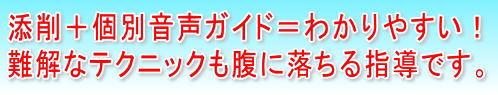 onsei_wakariyasui.jpg (498×95)